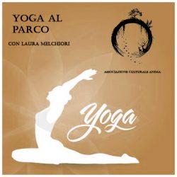 yoga ok